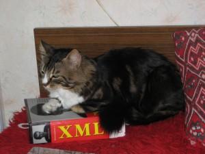 XML can be so boring